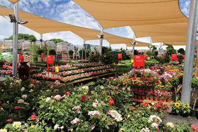 St Marys SA Wins Garden Centre Of The Year 02.jpg