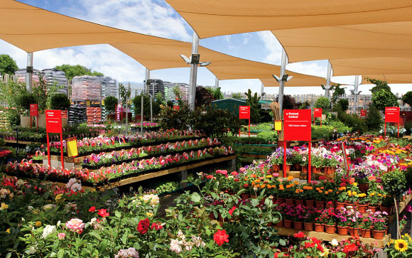 St Marys SA Wins Garden Centre Of The Year Feature 1.jpg
